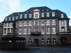 The City Council of Heidelberg